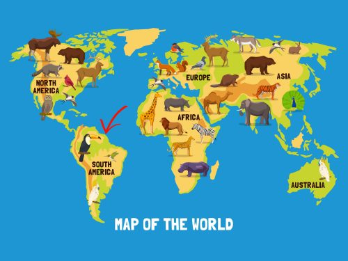 Carte Monde Guyane Web
